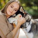 Comportamientos habituales en perros y gatos