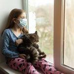 El coronavirus en los animales de compañía